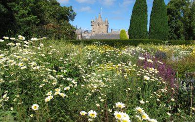 Virtual Gardens Visit – Cowdor Castle