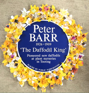 The Daffodil King - Peter Barr