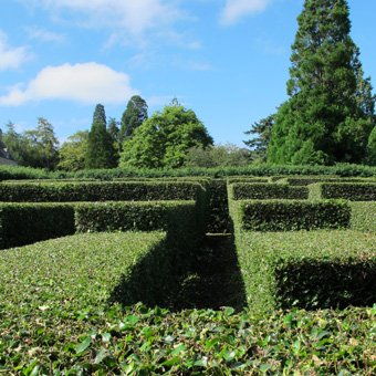 Cawdor Castle Maze. Photograph © Matthew Benians